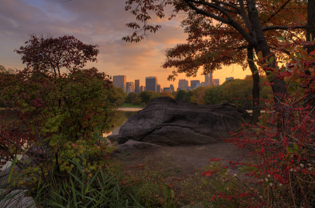 Sunset Tour of Central Park